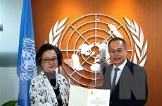 ASEAN 2020: ESCAP khẳng định mong muốn tăng hợp tác với Việt Nam