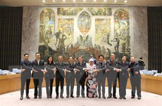 Phái đoàn Việt Nam chủ trì họp tổng kết Ủy ban ASEAN tại New York