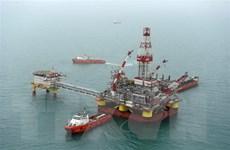 Giá dầu thế giới tăng nhờ tín hiệu tích cực hơn về nhu cầu dầu mỏ