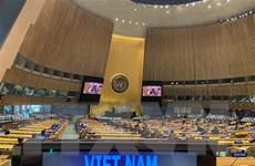 Indonesia: Việt Nam đóng góp đáng kể nâng cao tiếng nói của ASEAN