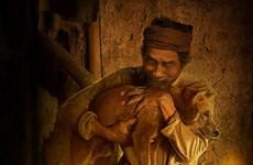 """Lão Hạc và """"cậu Vàng"""": Áp lực từ sức nặng của tác phẩm kinh điển"""