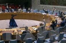 LHQ quan ngại trước tình trạng bất ổn tại Cộng hòa Trung Phi