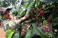 Phấn đấu đưa thương mại hai chiều Việt Nam-Ukraine lên mức 1 tỷ USD