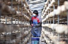 EU và Trung Quốc tiến gần hơn tới việc ký kết hiệp định đầu tư