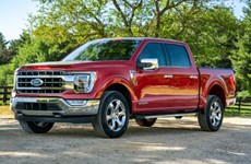 Doanh số bán xe của Ford giảm do dịch COVID-19 kéo dài