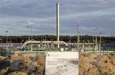 Đức khẳng định cần tiếp tục dự án Dòng chảy phương Bắc 2