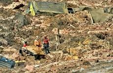 Brazil: Tập đoàn Vale bồi thường 7 tỷ USD do thảm họa vỡ đập chất thải
