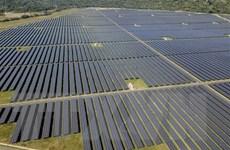 Việt Nam nằm trong top 3 chuyển đổi năng lượng tái tạo tại châu Á-TBD