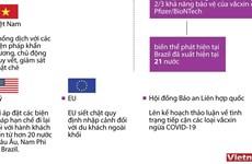 [Infographics] Các biện pháp phù hợp để ngăn chặn COVID-19 lây lan