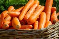 9 loại thực phẩm giúp hạn chế nếp nhăn, làn da trẻ trung hơn