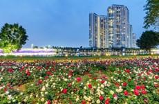 Hơn một triệu bông hồng bung nở rực rỡ khắp khu đô thị Ecopark