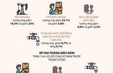 [Infographics] Hoạt động sản xuất công nghiệp giảm trong tháng Hai