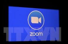 """Zoom tiếp tục """"ăn nên làm ra"""" trong mùa đại dịch COVID-19"""