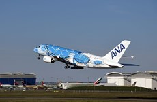 Các hãng hàng không Nhật Bản ngừng việc đặt vé từ nước ngoài