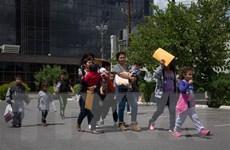 Mỹ: An ninh nội địa kêu gọi hỗ trợ giải quyết tình trạng trẻ em di cư