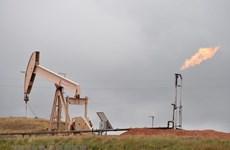 Công ty khí đốt Mỹ phụ thuộc vào xuất khẩu LNG sang châu Âu, Á