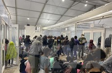 Mexico đề nghị Mỹ cấp thị thực lao động cho người di cư