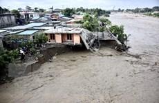 Mưa lũ tại Indonesia và Timor Leste nghiêm trọng, 113 người tử vong
