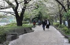 Nhật Bản, Iran lo ngại làn sóng lây nhiễm mới dịch COVID-19
