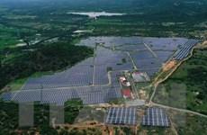Chuyên gia ấn tượng về chuyển đổi sang năng lượng tái tạo của Việt Nam