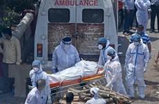 Ấn Độ có thể ghi nhận tới 1 triệu ca tử vong do dịch COVID-19