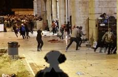 Bạo lực lại tiếp diễn tại Jerusalem khiến hàng chục người bị thương