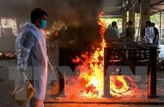 AFP: Số ca tử vong do COVID-19 ở Ấn Độ có thể cao gấp nhiều lần