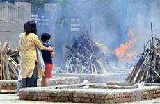 COVID-19: Ngày thứ hai liên tiếp Ấn Độ ghi nhận hơn 4.000 ca tử vong