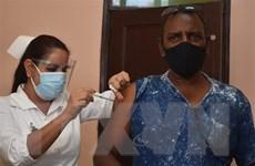 Cuba bắt đầu thử nghiệm hai loại vaccine phòng COVID-19