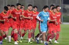 Vòng loại World Cup 2022: Đội tuyển Việt Nam dè chừng đối thủ nào