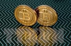 """Cảnh sát Anh phát hiện một cơ sở """"đào"""" bitcoin câu trộm điện"""