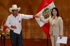 Pháp sư Peru tìm cách dự đoán kết quả cuộc bầu cử tổng thống
