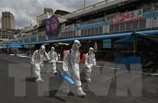 EU, WHO cùng hỗ trợ Campuchia ứng phó với dịch bệnh COVID-19