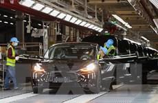 Tesla thông báo 2 đợt triệu hồi xe mới do vấn đề dây đai an toàn