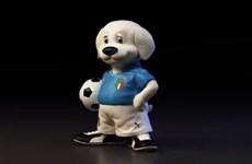 EURO: Chú chó chăn cừu Maremma - linh vật đồng hành cùng tuyển Italy