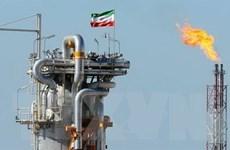 IEA dự báo nhu cầu tiêu thụ dầu mỏ thế giới đang phục hồi