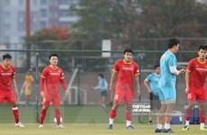 Vòng loại World Cup: Quang Hải sẵn sàng, Tuấn Anh khó dự trận gặp UAE