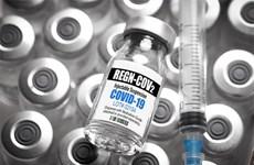 Thuốc kháng thể giúp giảm số ca tử vong ở bệnh nhân COVID-19 nặng
