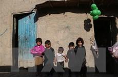 EU khẳng định duy trì hoạt động ngoại giao và viện trợ tại Afghanistan
