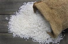 Thị trường nông sản tuần qua: Giá gạo giảm, càphê Robusta tăng