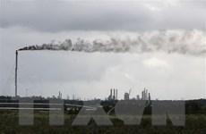 Chủ tịch COP26 hoan nghênh nỗ lực vì môi trường của Tổng thống Nga