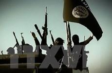 Nga cảnh báo tổ chức IS đang xây dựng lực lượng tại Afghanistan