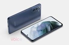 Samsung cân nhắc chỉ ra mắt Galaxy S21 FE tại Mỹ, châu Âu
