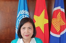 Hội đồng Nhân quyền LHQ thông qua nghị quyết do Việt Nam đề xuất