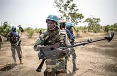 Tổng thư ký LHQ đề nghị tăng thêm 2.000 lính gìn giữ hòa bình tại Mali