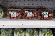 Anh là thị trường xuất khẩu tiềm năng cho rau quả Việt Nam