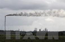 IEA cảnh báo nguy cơ lượng khí thải toàn cầu tăng cao kỷ lục vào 2023
