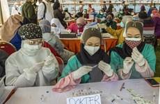 Dịch COVID-19: Indonesia kéo dài các hạn chế xã hội khẩn cấp