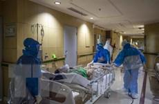 COVID-19: Malaysia và Indonesia lập 'đỉnh' về số ca mắc mới và tử vong