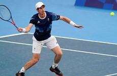 Tay vợt Andy Murray rút khỏi nội dung đơn nam vì chấn thương